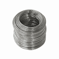 Steel Galvanized Wire - 20 gauge, 175 ft.