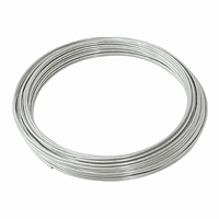 Steel Galvanized Wire - 12 gauge, 100 ft.